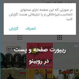 ریپورت صفحه و پست در روبینو