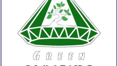Photo of طراحی لوگو گلخانه الماس سبز