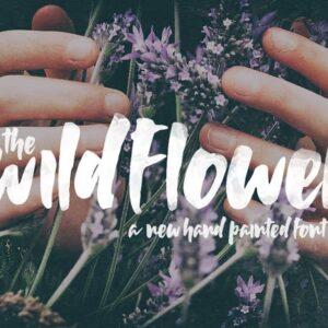 دانلود فونت وایلد فلوور Wildflower Font