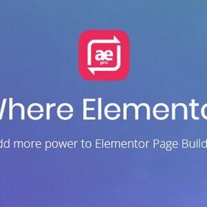 دانلود افزونه وردپرس AnyWhere Elementor Pro برای المنتور