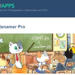 دانلود افزونه وردپرس تغییر نام Media File Renamer Pro