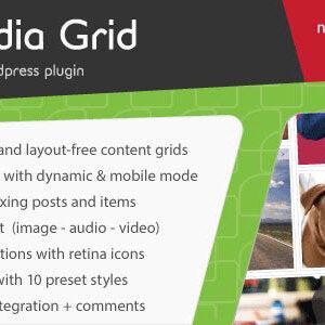 دانلود افزونه وردپرس نمونه کار Media Grid