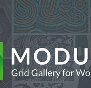 دانلود افزونه وردپرس گالری ماژولا پرو Modula Pro