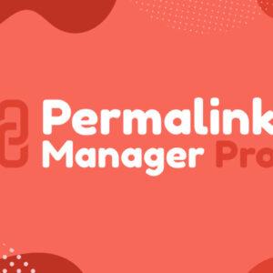 دانلود افزونه وردپرس مدیریت لینک Permalink Manager Pro
