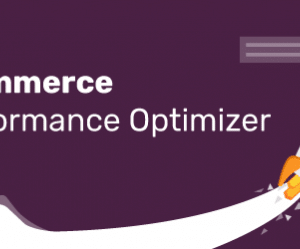 دانلود افزونه وردپرس Premmerce Performance Optimizer Premium