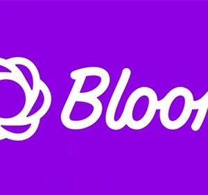 دانلود افزونه وردپرس خبرنامه Bloom