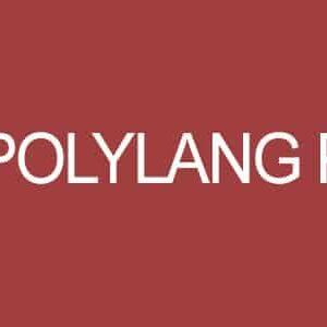 دانلود افزونه وردپرس سایت چند زبانه Polylang Pro