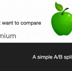 دانلود افزونه وردپرس تست Simple Page Tester Premium