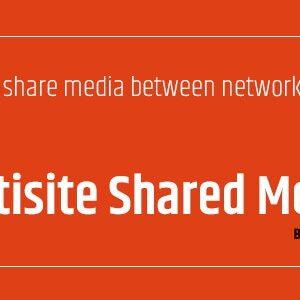 دانلود افزونه وردپرس WordPress Multisite Shared Media