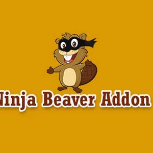 دانلود افزونه وردپرس Ninja Beaver Addon Pro