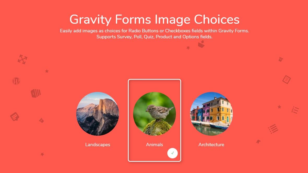 دانلود افزونه وردپرس Gravity Forms Image Choices