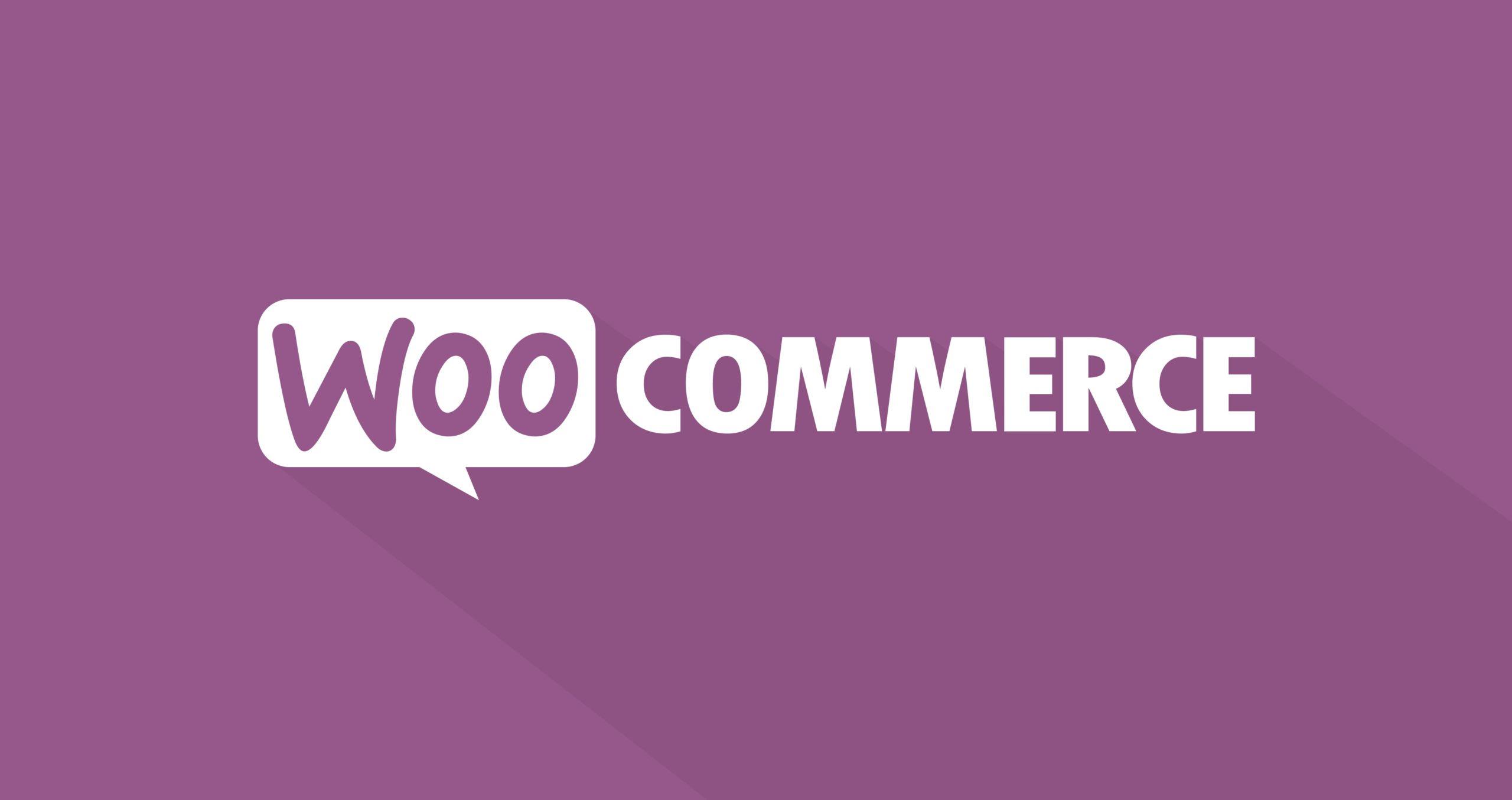 دانلود افزونه Product Filters for WooCommerce Quick product search