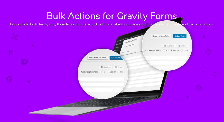 دانلود افزونه وردپرس Bulk Actions Pro برای گرویتی فرم