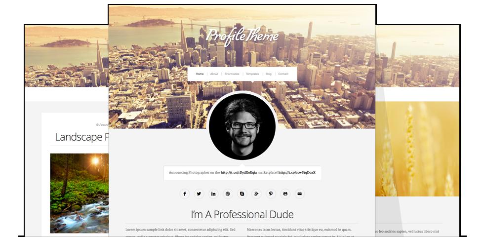 دانلود قالب وردپرس Profile Theme