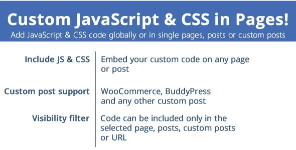 دانلود افزونه وردپرس Custom JavaScript & CSS in Pages