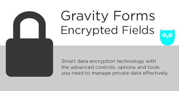 دانلود افزونه وردپرس Gravity Forms Encrypted Fields