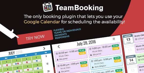 دانلود افزونه وردپرس وقت گرفتن Team Booking