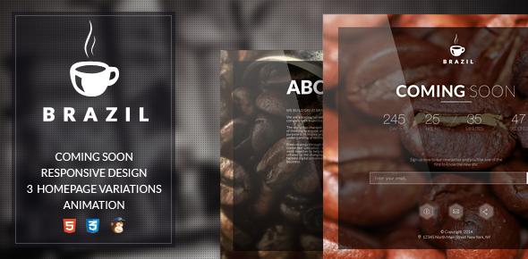دانلود قالب HTML در دست طراحی Brazil