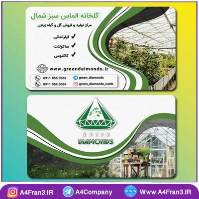 طراحی کارت ویزیت گلخانه الماس سبز شمال