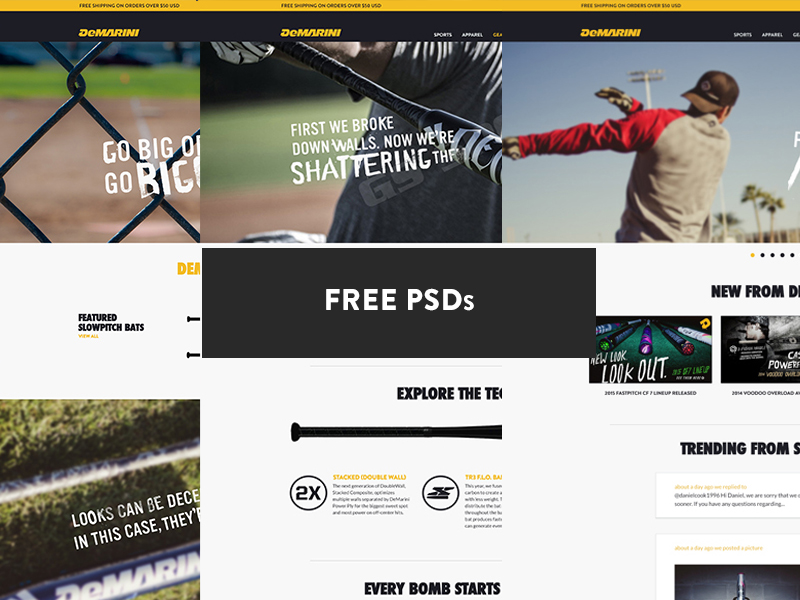 دانلود قالب فتوشاپ سایت ورزشی Demarini Sports